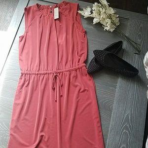 New Ann Taylor summer dress